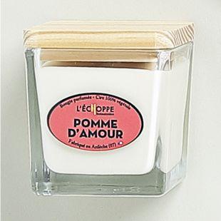 Bougie parfumée cire 100% végétale soja